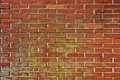 De voor- en nadelen van een muuranker